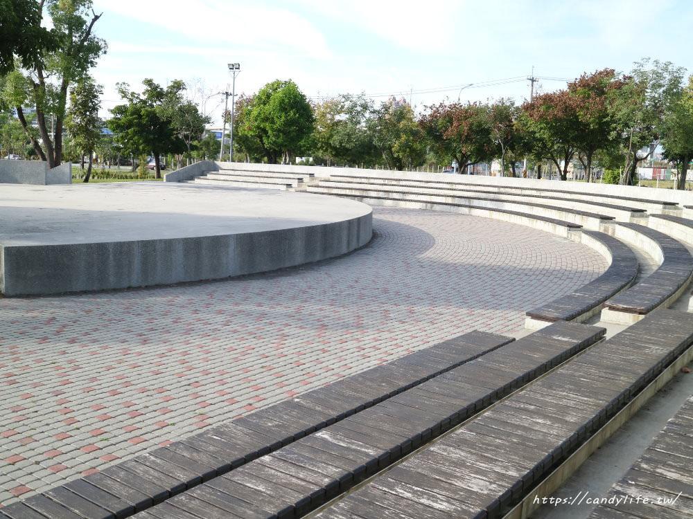 20181204172921 30 - 超可愛米奇樹就在台中萬坪公園,還有美麗的落羽松步道~