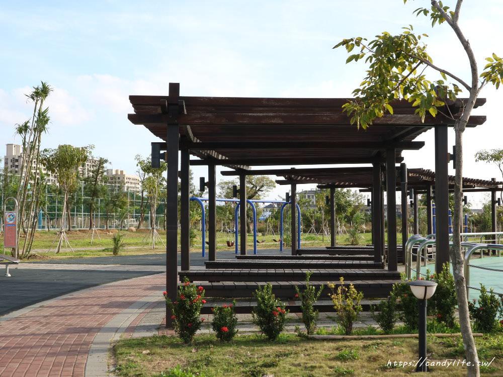 20181204172938 63 - 超可愛米奇樹就在台中萬坪公園,還有美麗的落羽松步道~