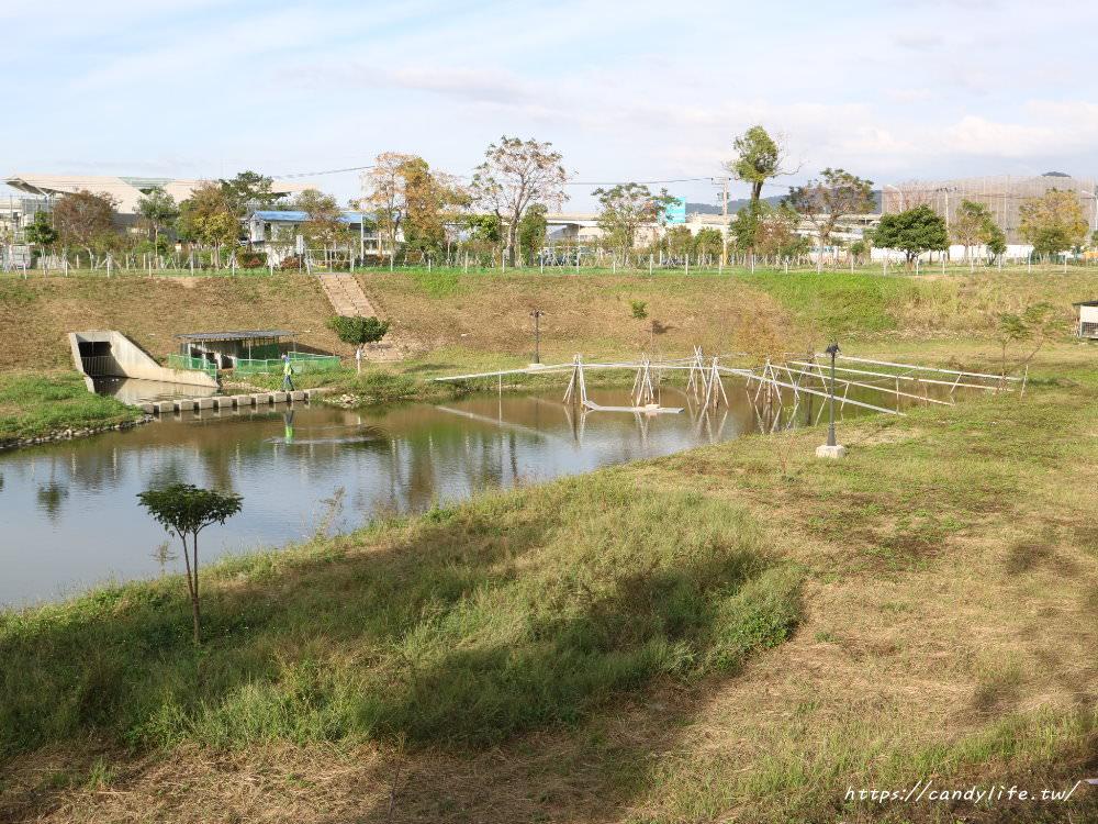 20181204172955 31 - 超可愛米奇樹就在台中萬坪公園,還有美麗的落羽松步道~
