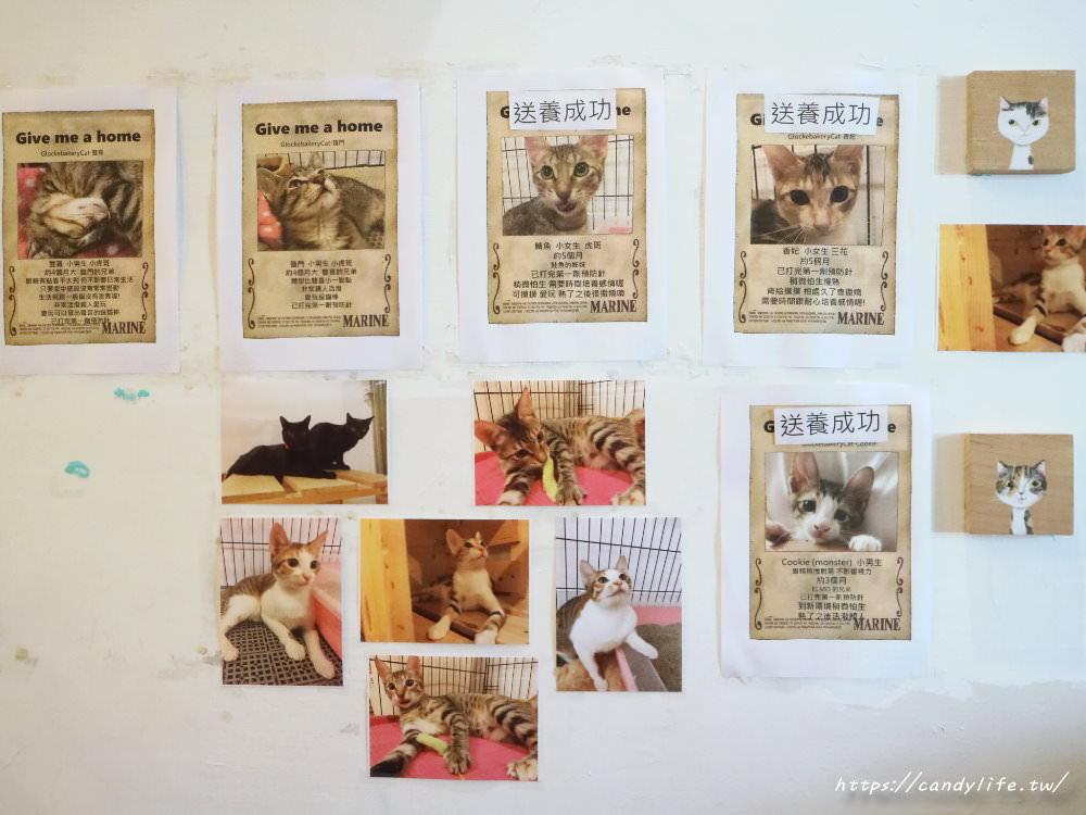20190419230918 28 - 結合貓咪中途之家的甜點店,甜點好吃,還有可愛的貓咪作伴~