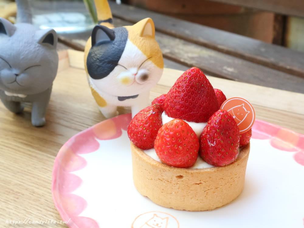 20190419230938 10 - 結合貓咪中途之家的甜點店,甜點好吃,還有可愛的貓咪作伴~