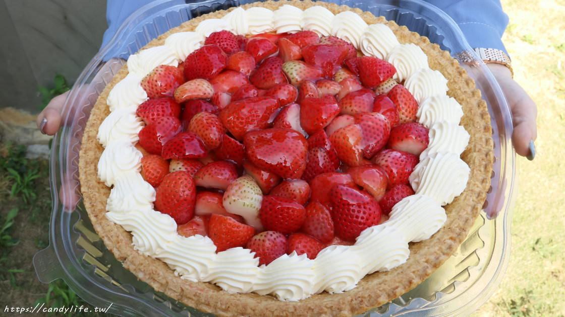 超狂巨無霸草莓卡士達塔,重達1.6公斤,滿滿新鮮草莓,一個只要499元!